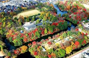 空から見た古城公園