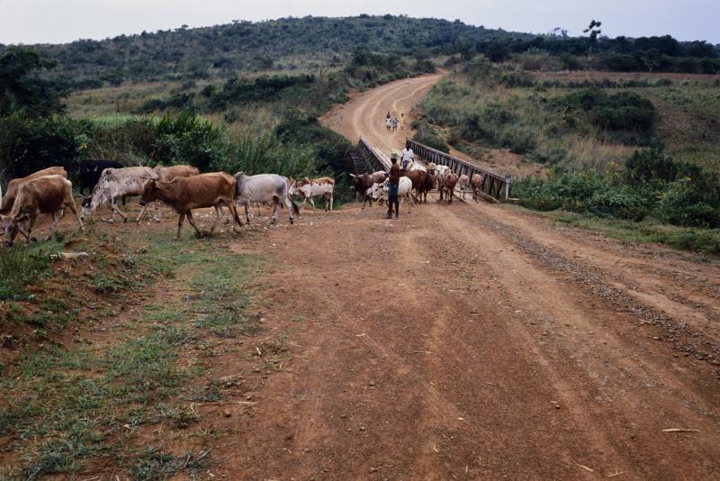 Kenya10-37.jpg