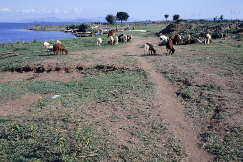 Kenya11-37.jpg