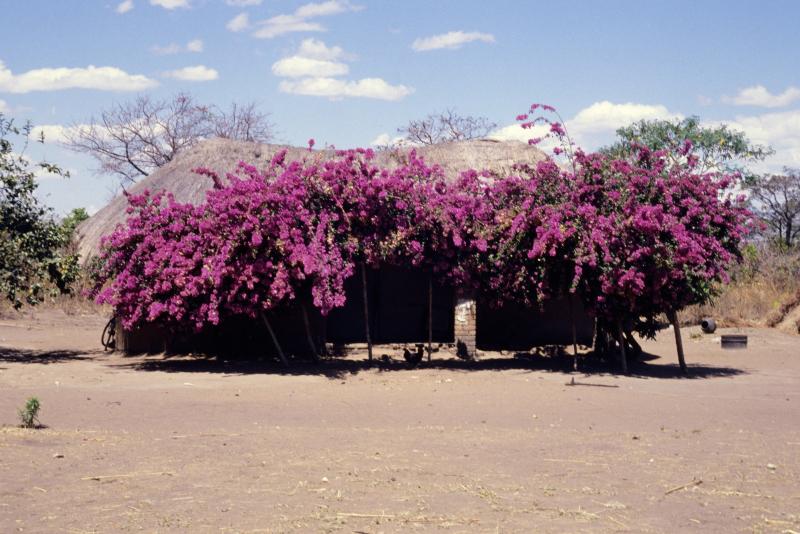 Kenya18-24.jpg