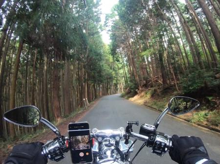 ぴーきちハーレーブログ 青山高原、月ケ瀬キャンプツーリング 県道512号線