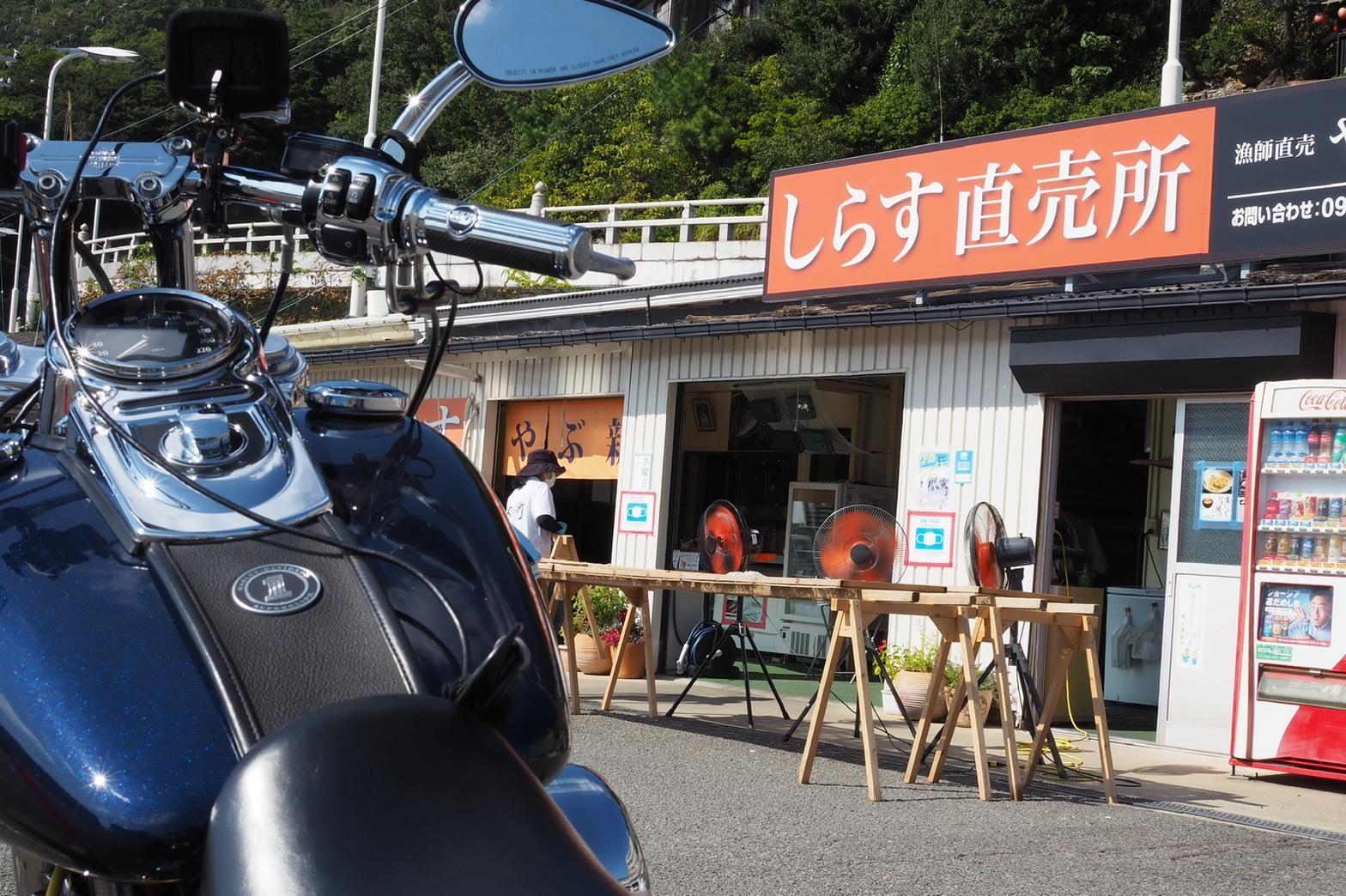 ぴーきちグルメブログ 和歌の浦 やぶ新 究極のしらす丼 直売所