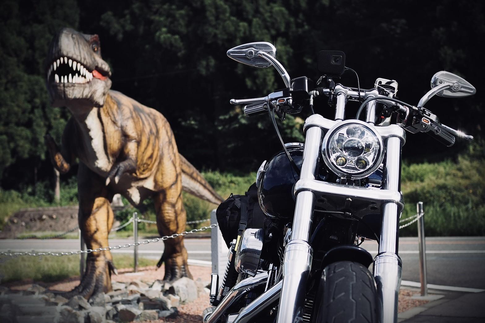ぴーきちグルメブログ 石川県 レストラン手取川 福井勝山 恐竜博物館 ティラノザウルス