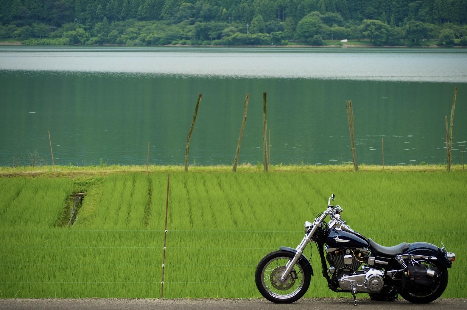 ぴーきちハーレーブログ ビワイチ ヨゴイチツーリング 余呉湖 絶景