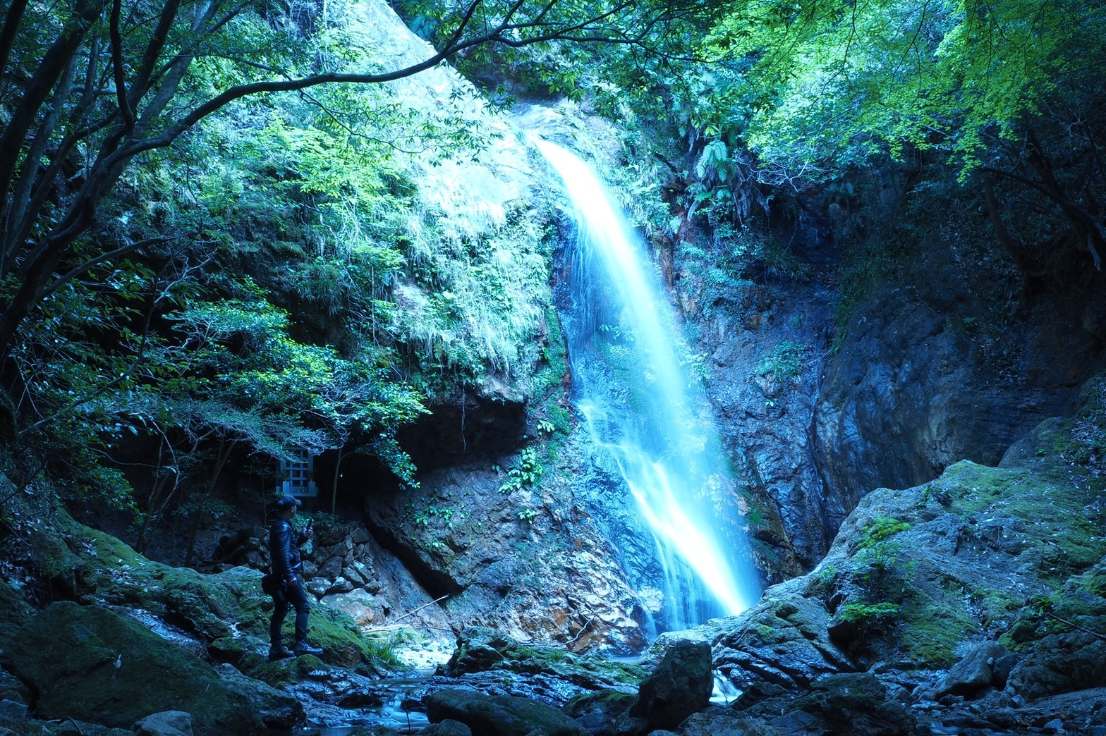 ぴーきち&ダイナ ハーレーブログ 大阪ツーリング 権現滝とぴーきち