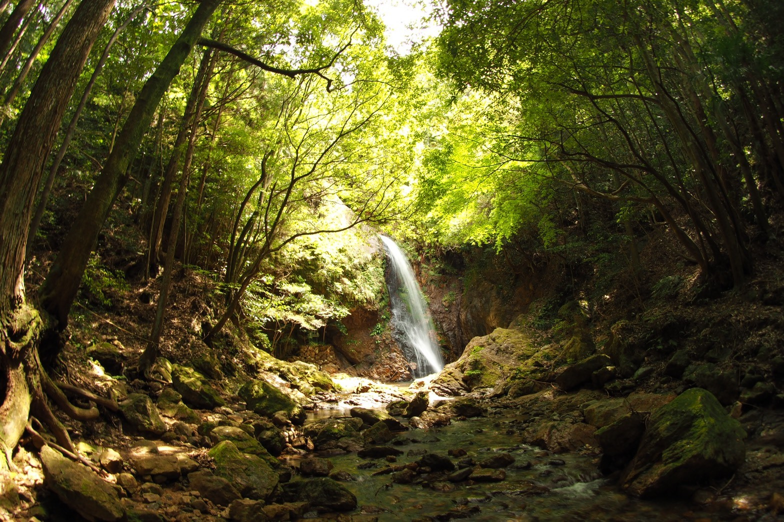 harleydavidson-motorcycle-touring-blog-osaka-minamikawachi-takihata-gongen-waterfall-3.jpg