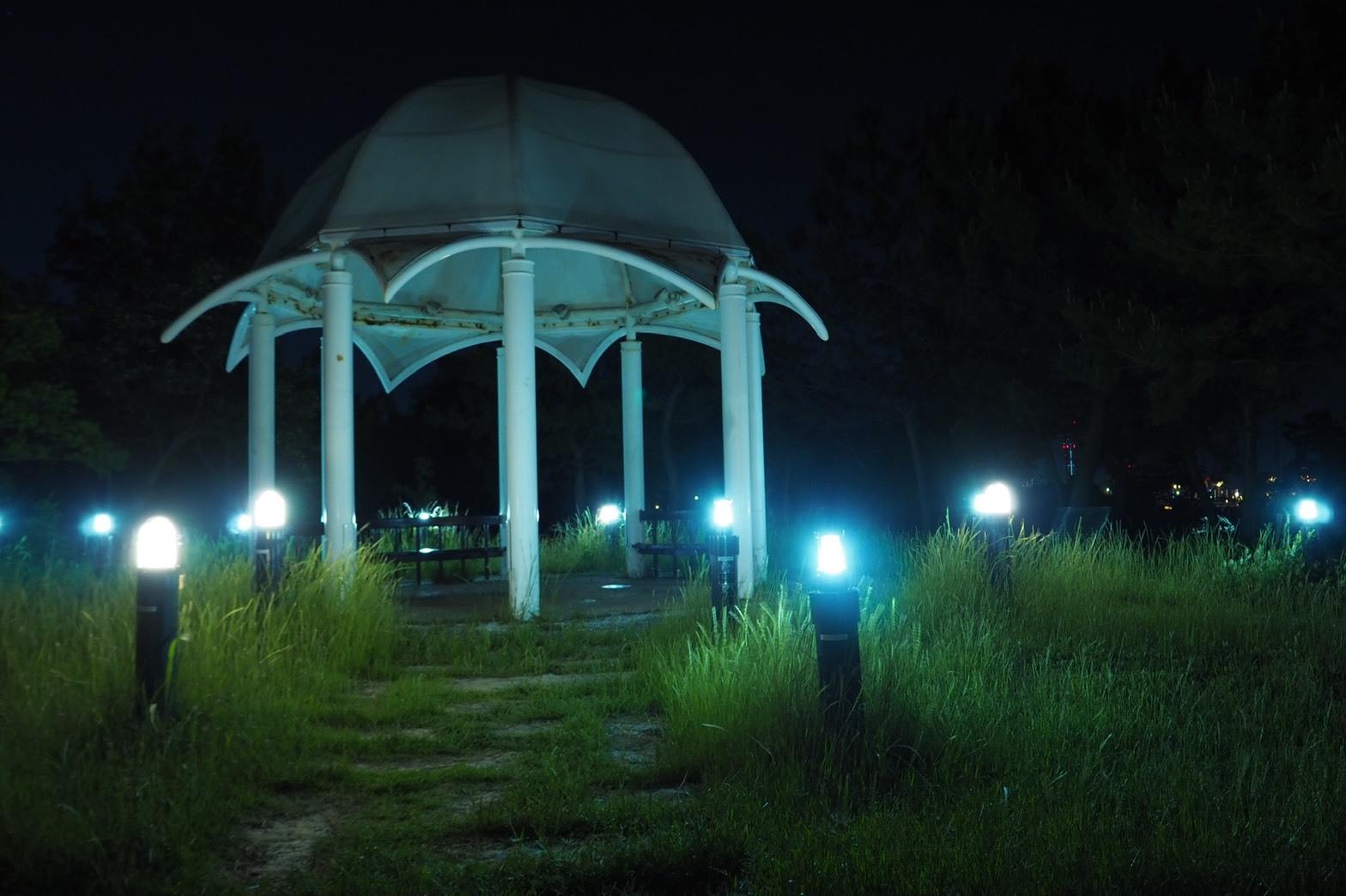 ぴーきち&ダイナ ハーレーブログ 大阪ツーリング ナイトバージョン 舞洲の夜景 新夕陽ヶ丘 展望台