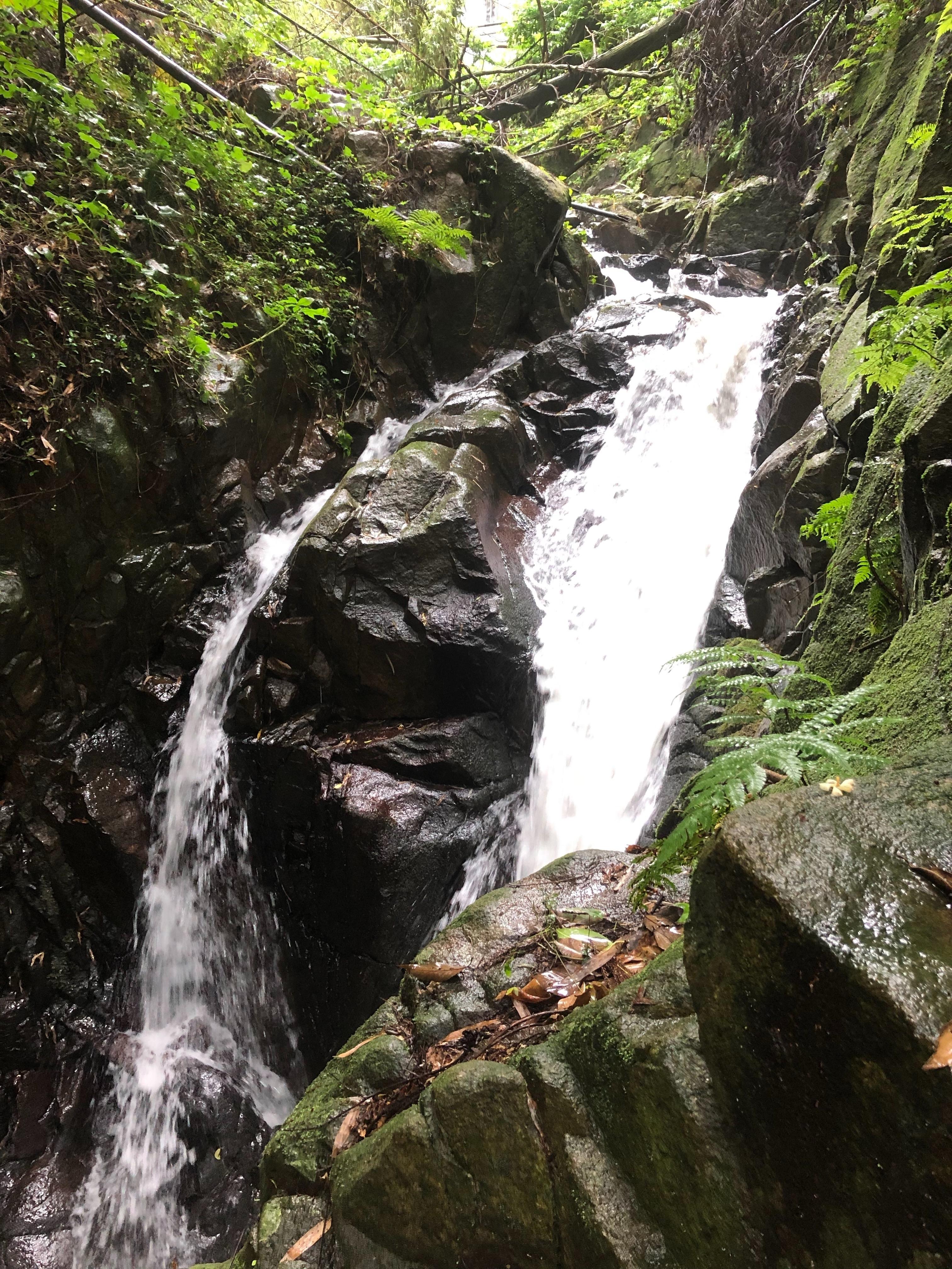 ぴーきち&ダイナ ハーレーブログ 京都 龍王の滝 滝口