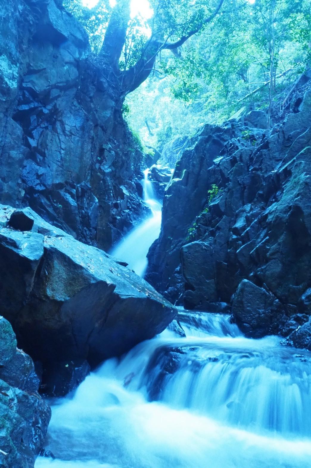 ぴーきち&ダイナ ハーレーブログ 京都 龍王の滝