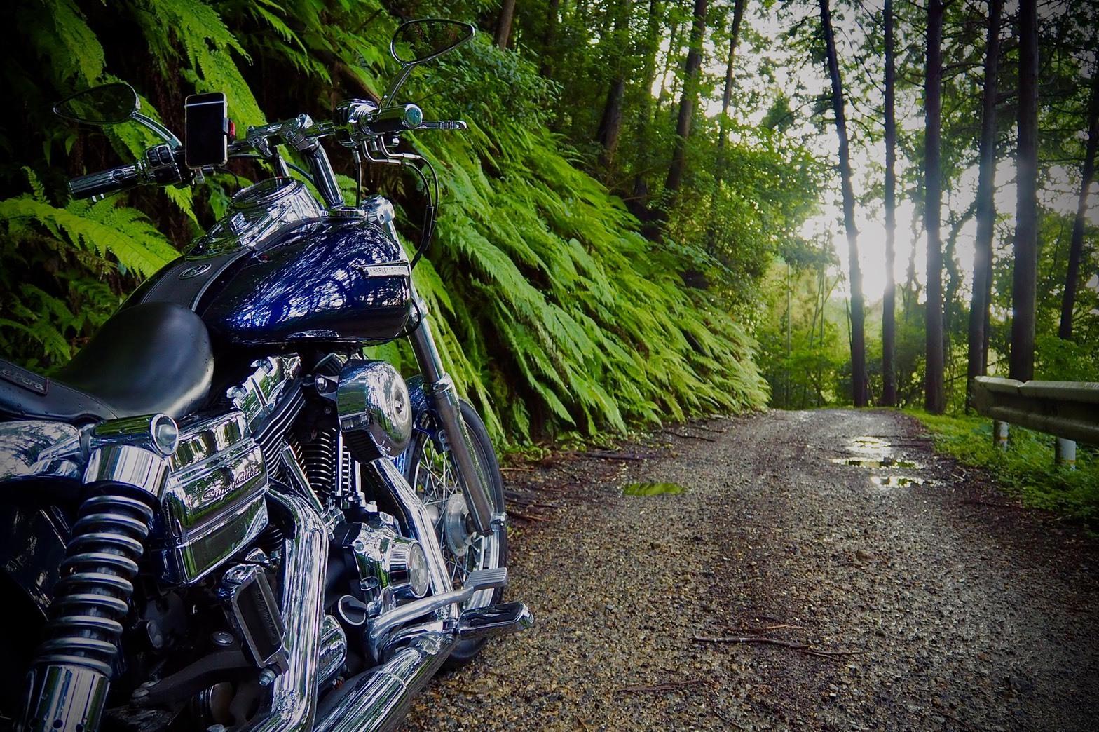 harleydavidson-motorcycle-touring-kyoto-ryuoh-waterfall-road-badroad.jpg