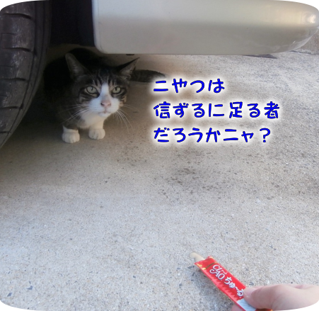 20201009143344586.png