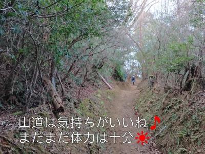 he13-8a-03.jpg