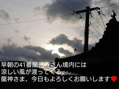 he14-2d-02.jpg