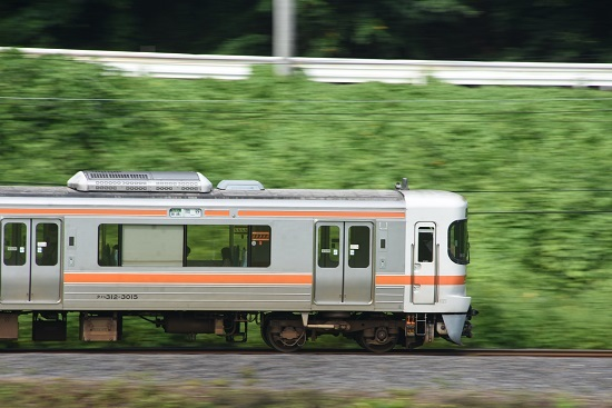 2020年8月23日撮影 飯田線 1415M 313系先頭流し撮り