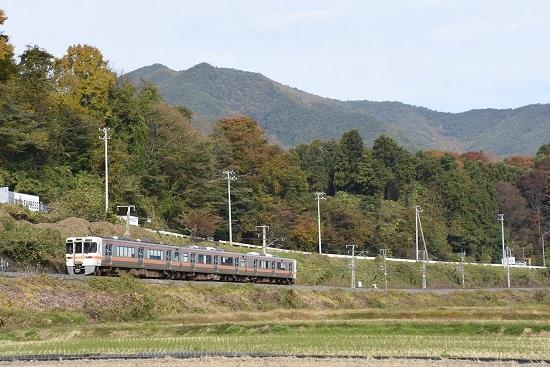 2020年11月1日撮影 飯田線213M 313系17000番台と紅葉
