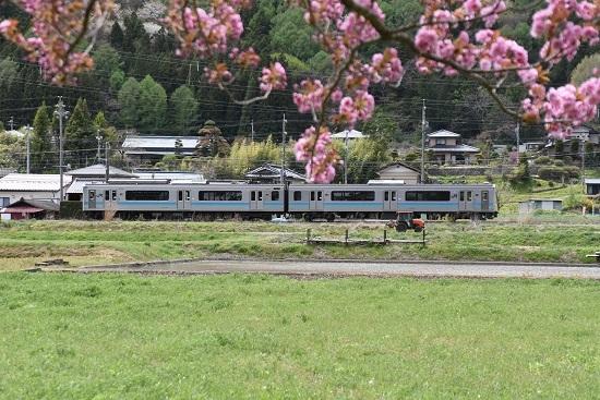 2020年5月4日撮影 辰野線 158M E127系と八重桜