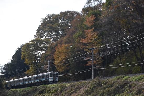 2020年11月1日撮影 飯田線210M 211系と紅葉