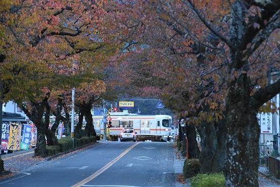 2020年11月7日撮影 飯田線 宮木の桜並木と1403M 313系