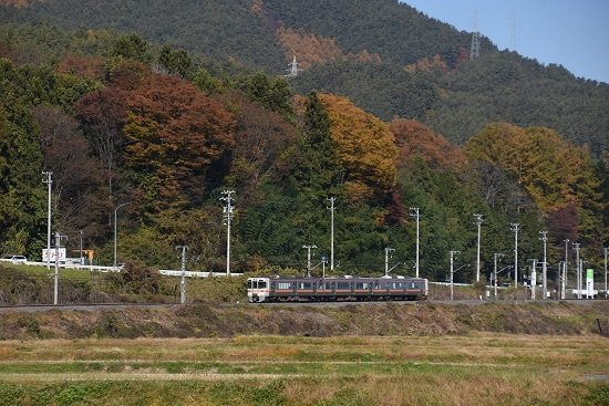 2020年11月8日撮影 飯田線 544M 313系1700番台 B152編成 紅葉と 1