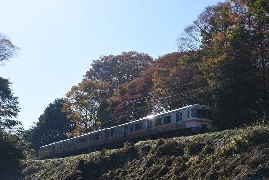 2020年11月8日撮影 飯田線 544M 313系1700番台 B152編成 紅葉と 3