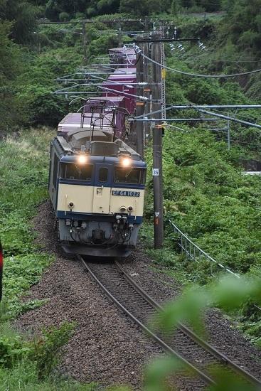 2020年8月30日撮影 西線貨物81レ 伊奈川鉄橋