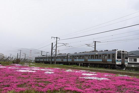 2020年5月6日撮影 829M 211系と芝桜