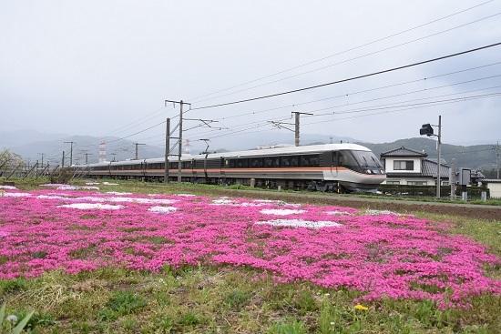 2020年5月6日撮影 1007M 383系WVしなの7号と芝桜