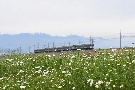 2020年5月9日撮影 みどり湖にて 1533M 211系とノースポール