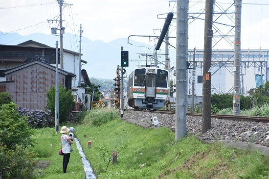 2020年7月19日撮影 飯田線 2223M 213系を後撃ち 親子鉄