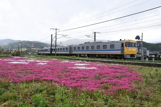 2020年5月10日撮影 中央西線 キヤ95 DR1編成 芝桜