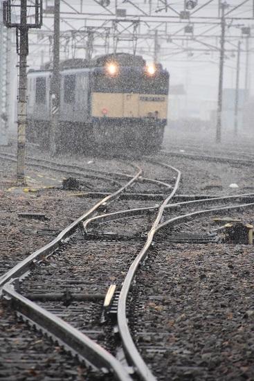 2020年3月14日撮影 南松本にて雪降る中、待機する西線貨物8084レ