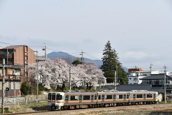 2020年4月12日撮影 飯田線 211M 313系1700番台と桜