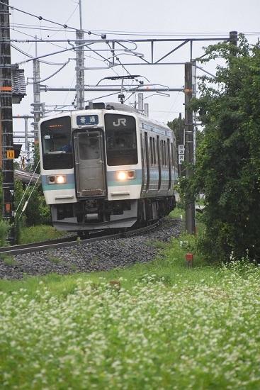 2020年7月26日撮影 飯田線 221M 211系代走 蕎麦の花と