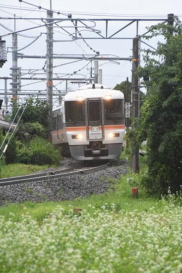 2020年7月26日撮影 飯田線宮田付近にて373系と蕎麦の花