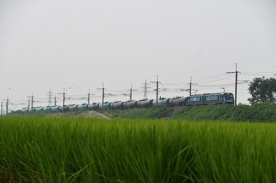 2020年8月8日撮影 東線貨物5460レ EH200-16号機