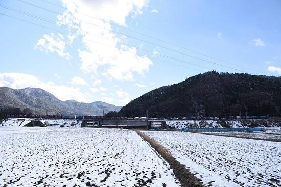 2020年3月15日撮影 東線貨物2083レ コンテナ貨物の編成