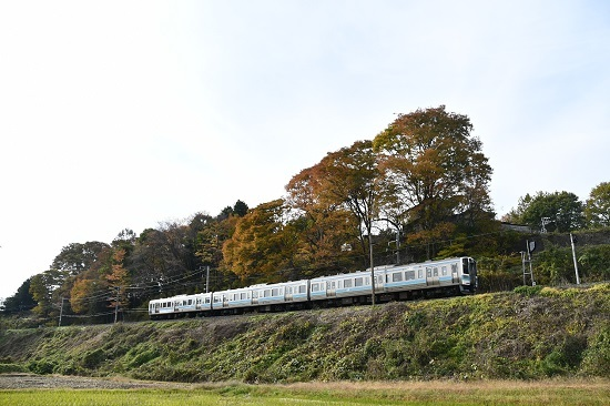 2020年11月月1日撮影 飯田線 210M 211系