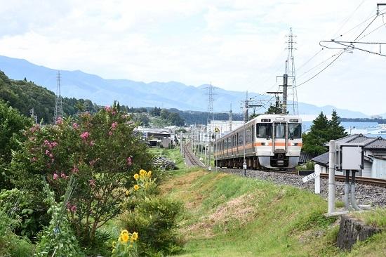 2020年8月10日撮影 飯田線 216M 313系1700番台 40‰ その3