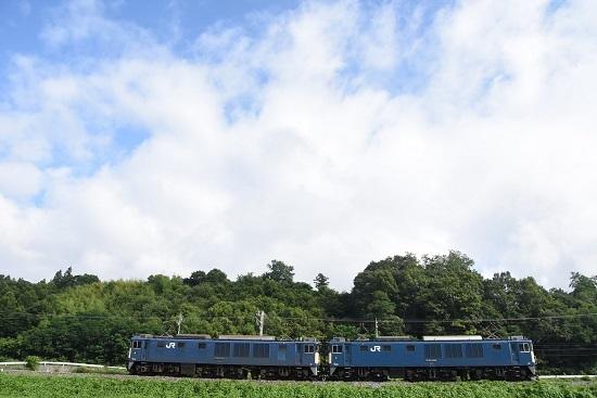 2020年8月1日撮影 篠ノ井線8467レ EF64原色重連 坂北カーブにてサイドから
