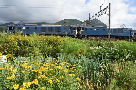 2020年8月1日撮影 篠ノ井線8467レ EF64原色重連 聖高原駅