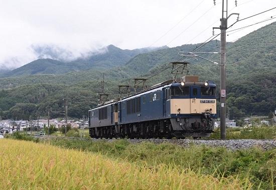 2020年9月19日撮影 篠ノ井線8467レ EF64原色重連 長野道下の踏切