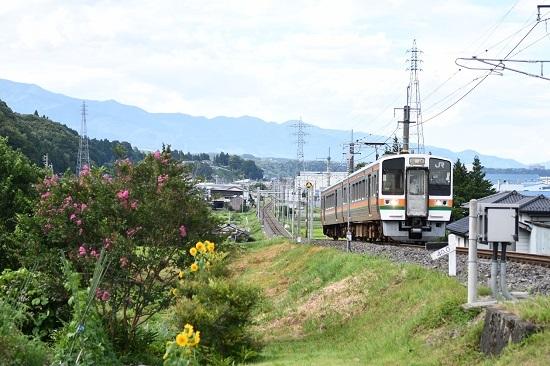 2020年8月10日撮影 飯田線は40‰にて213系回送と向日葵と百日紅の花