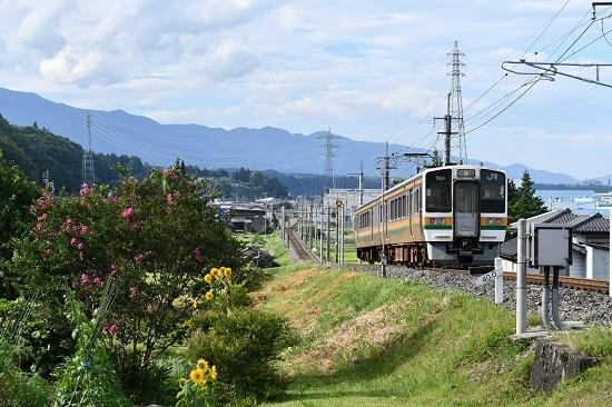 2020年8月10日撮影 飯田線は40‰にて213系 回送を後撃ち ヒマワリと百日紅の花