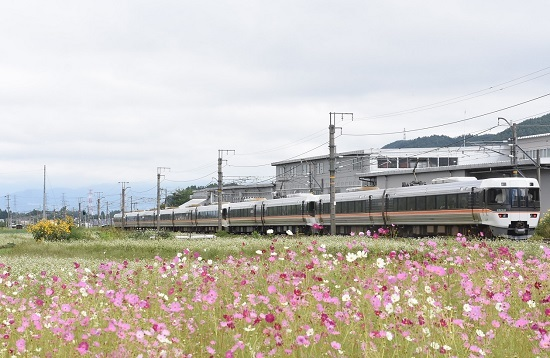 2020年9月19日撮影 中央西線 383系 1005M WVしなの5号と秋桜