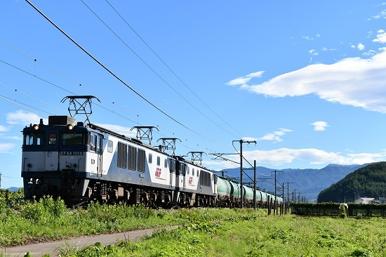 2020年8月11日撮影 西線貨物6088レ EF64-1008+1002号機