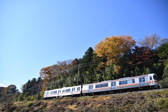 2020年11月8日撮影 飯田線 217M 313系 紅葉と