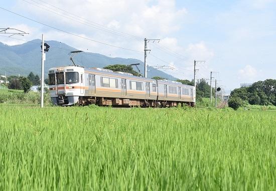 2020年8月2日撮影 飯田線 沢にて 回送M 313系