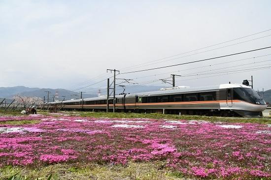 2020年4月26日撮影 1008M 383系 WVしなの8号と芝桜