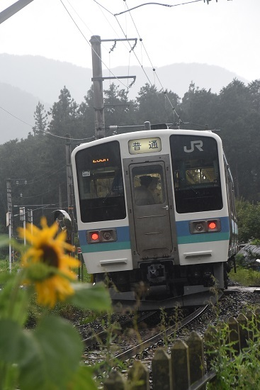 2020年8月2日撮影 飯田線は羽場駅にて233M 211系を後撃ち