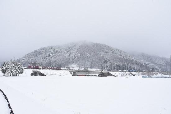 2020年3月29日撮影2 東線貨物2083レ 雪が降る中EH200-4号機 空コキ